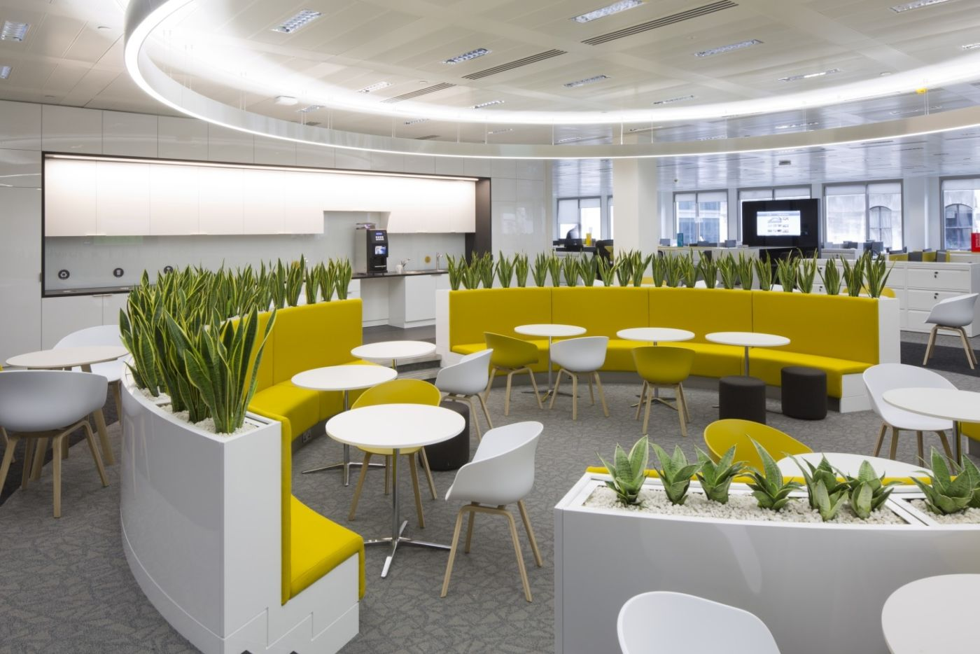 Modern office with circular seating area surrounded by plants