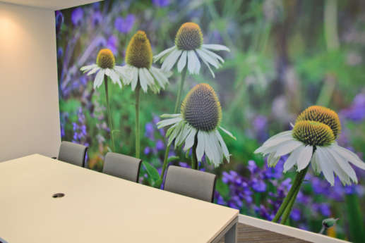 Flower photography on meeting room wall