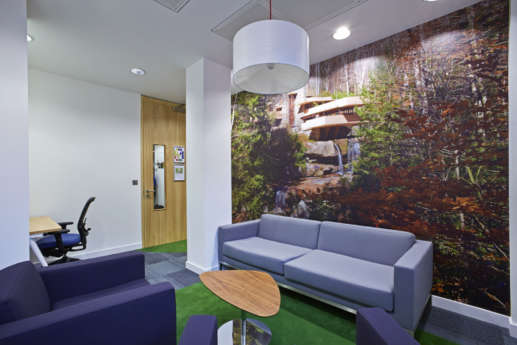 Wall graphic of a waterfall and grey sofas in modern office