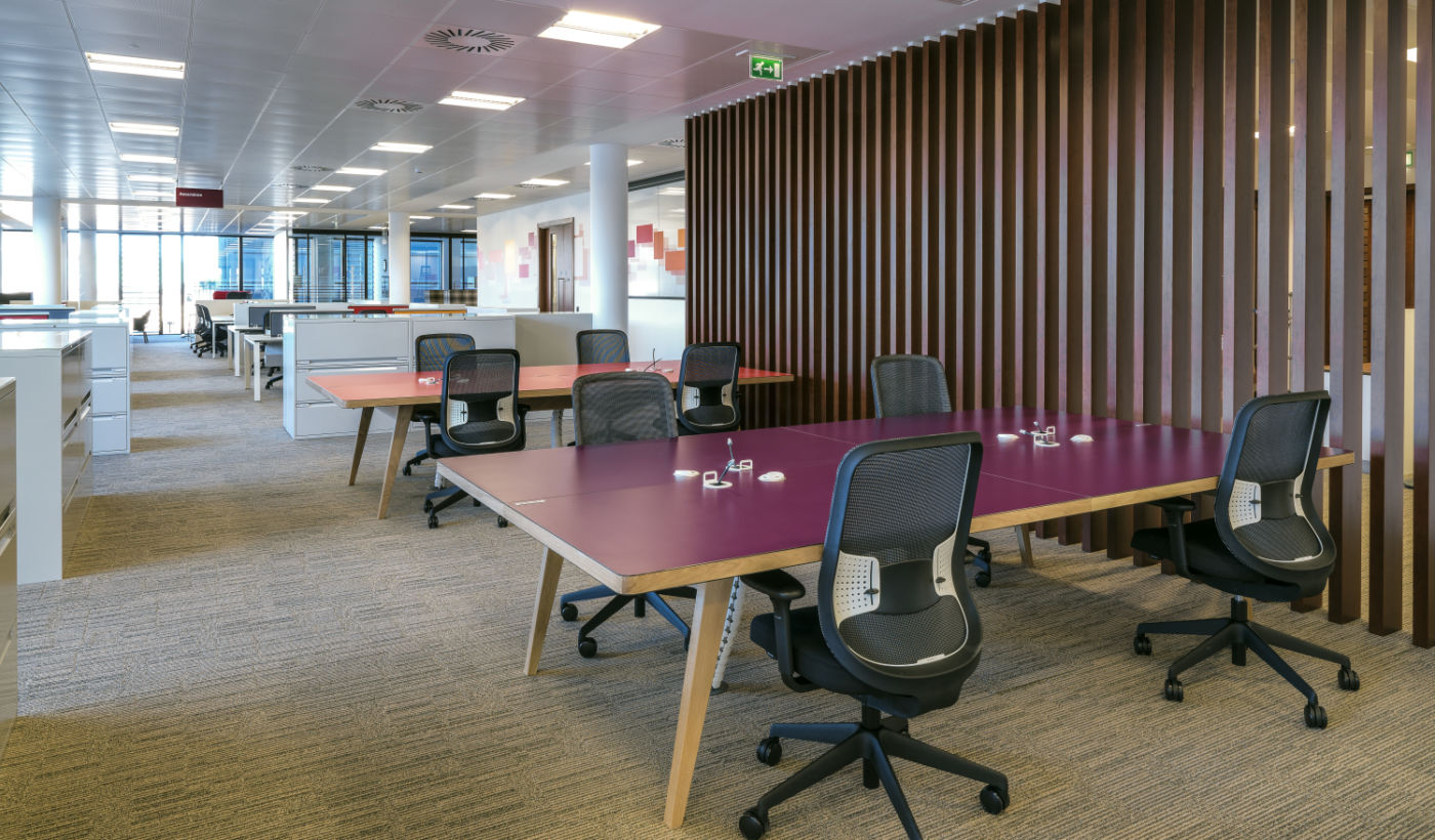 Purple desks and workstations in modern fit out