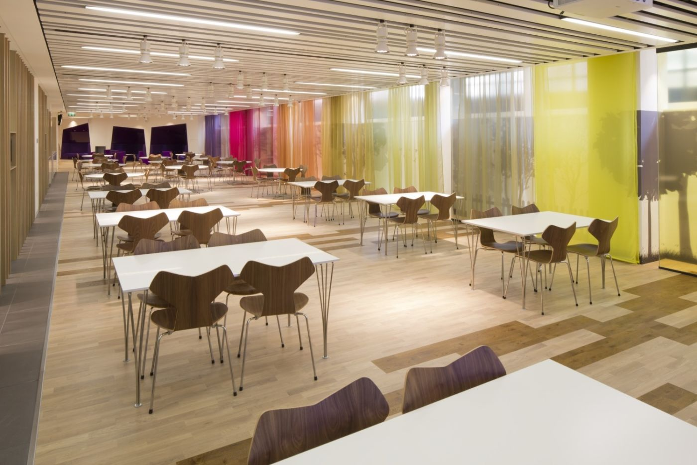 Large staff dining area with coloured wall accents