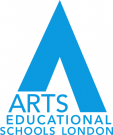 Arts Educational School
