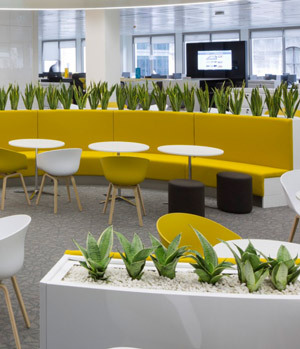 Cafeteria surrounded by plants