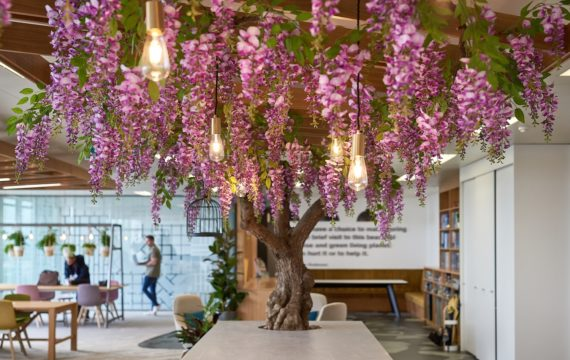 Biophilic design in the office