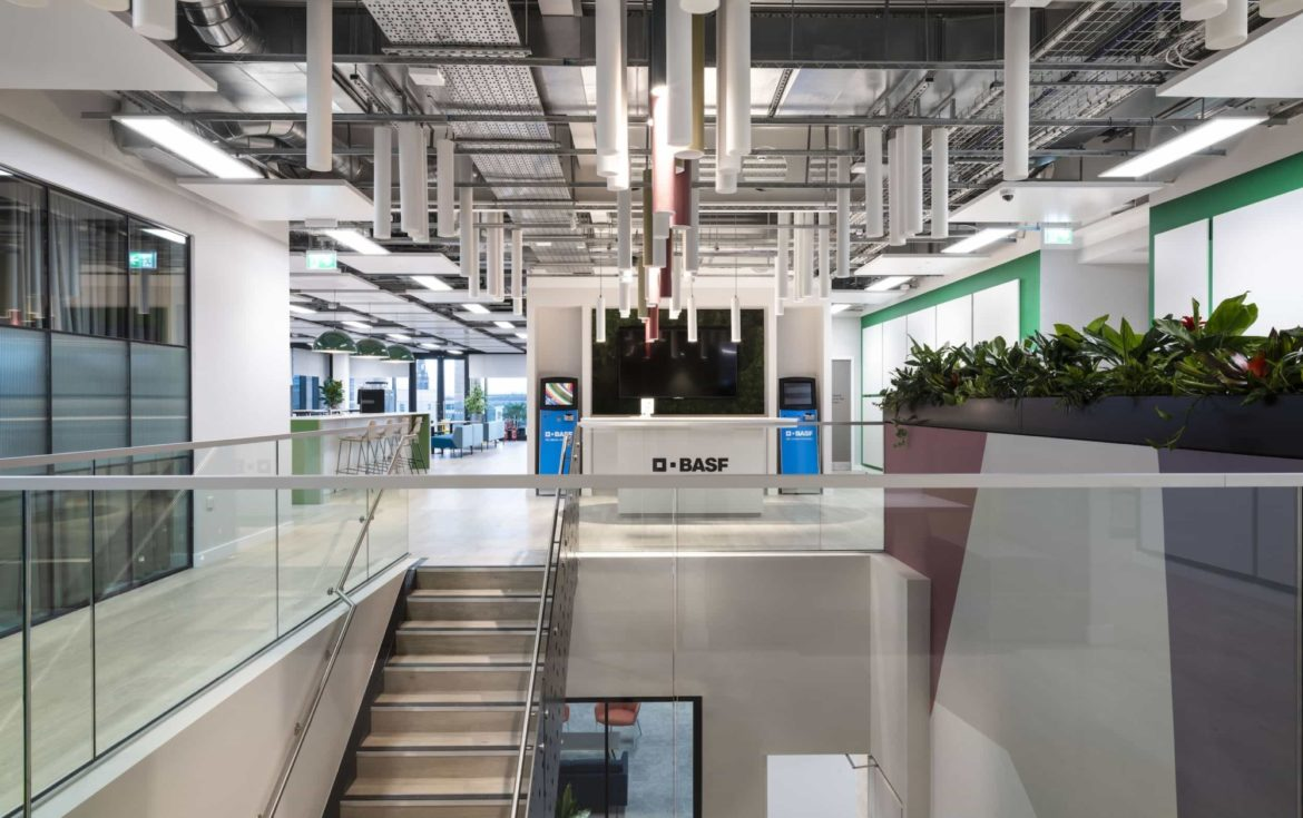 BASF office fit out