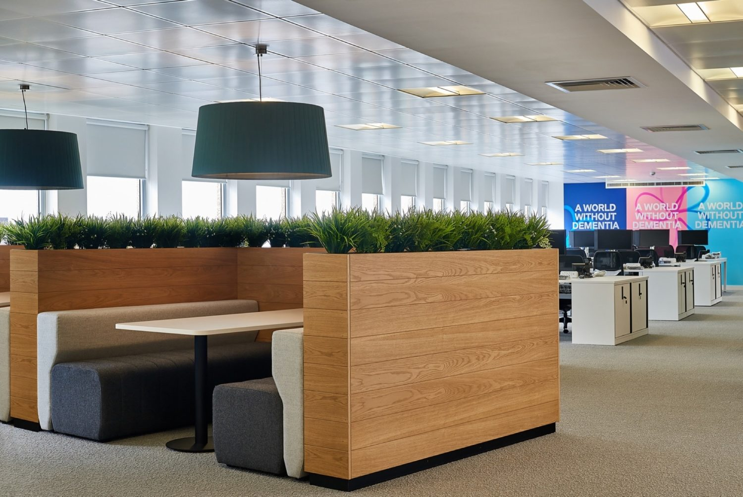 Alzheimers Society biophilic office design and fit out.jpg