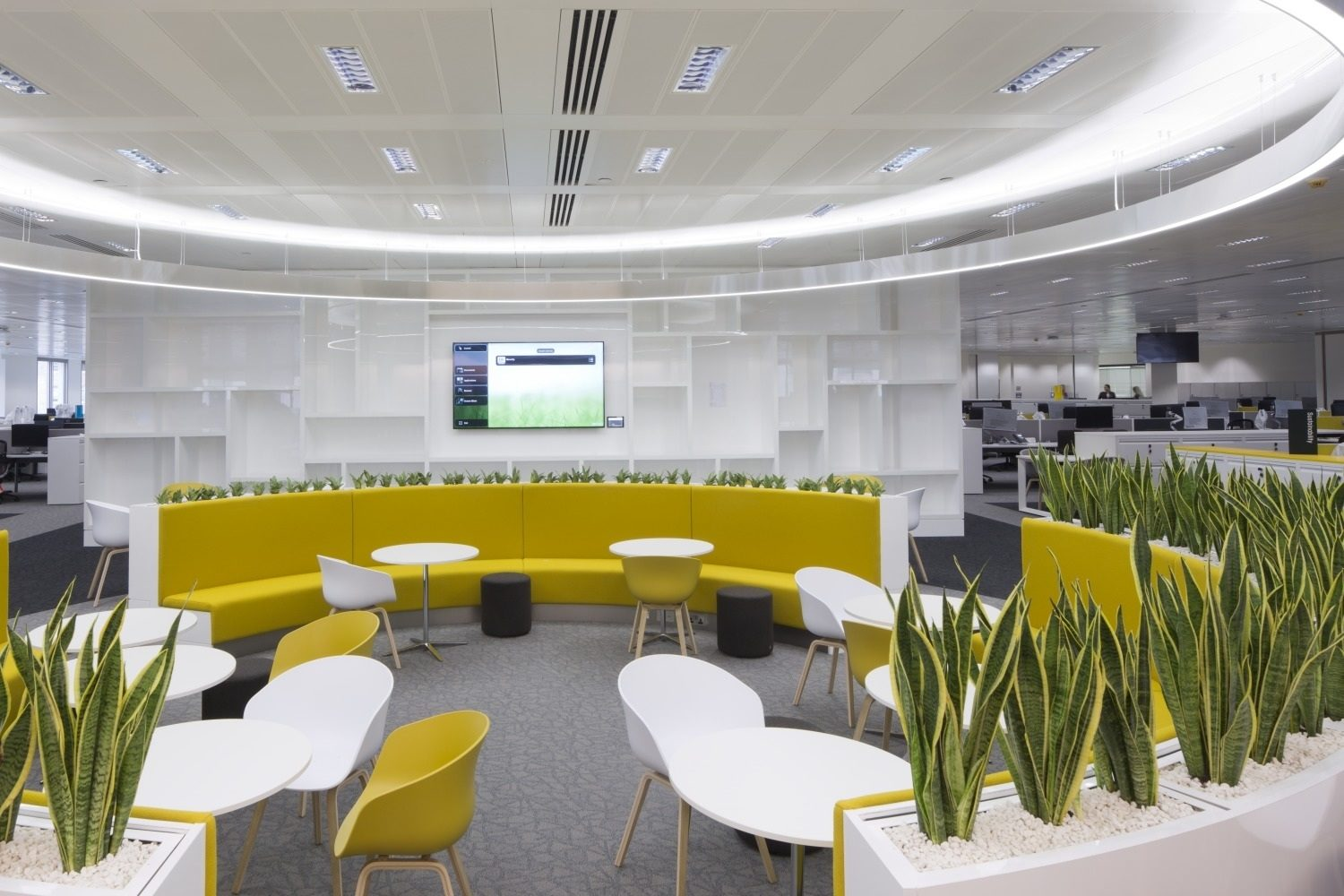 GVA biophilic office fit out