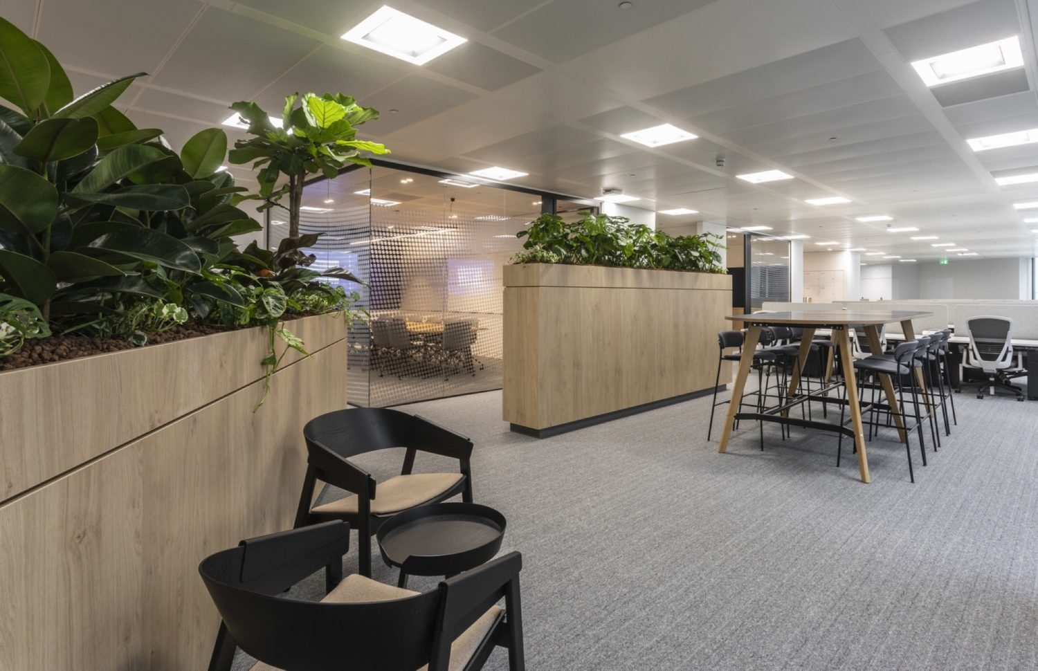 Link open plan office fit out