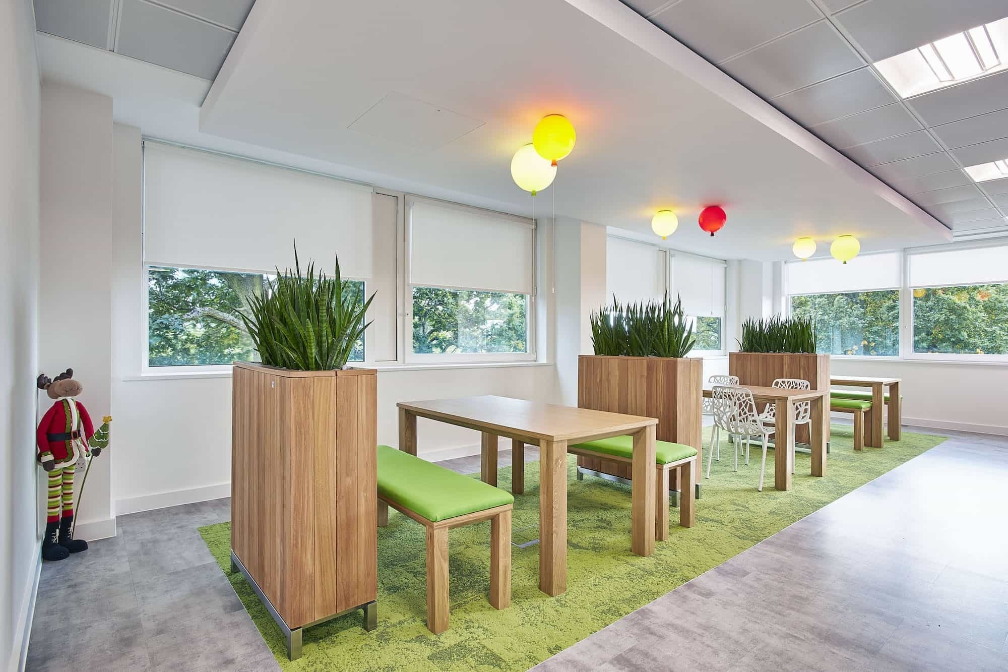 Phoebus biophilia in office fit out