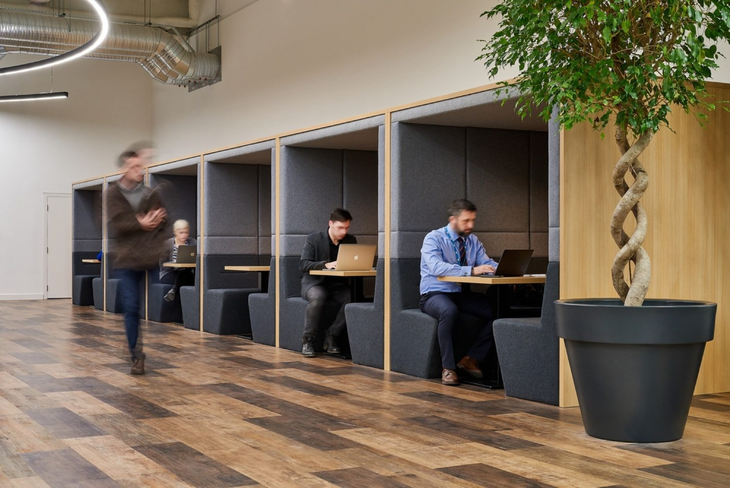 WSP office pod fit out
