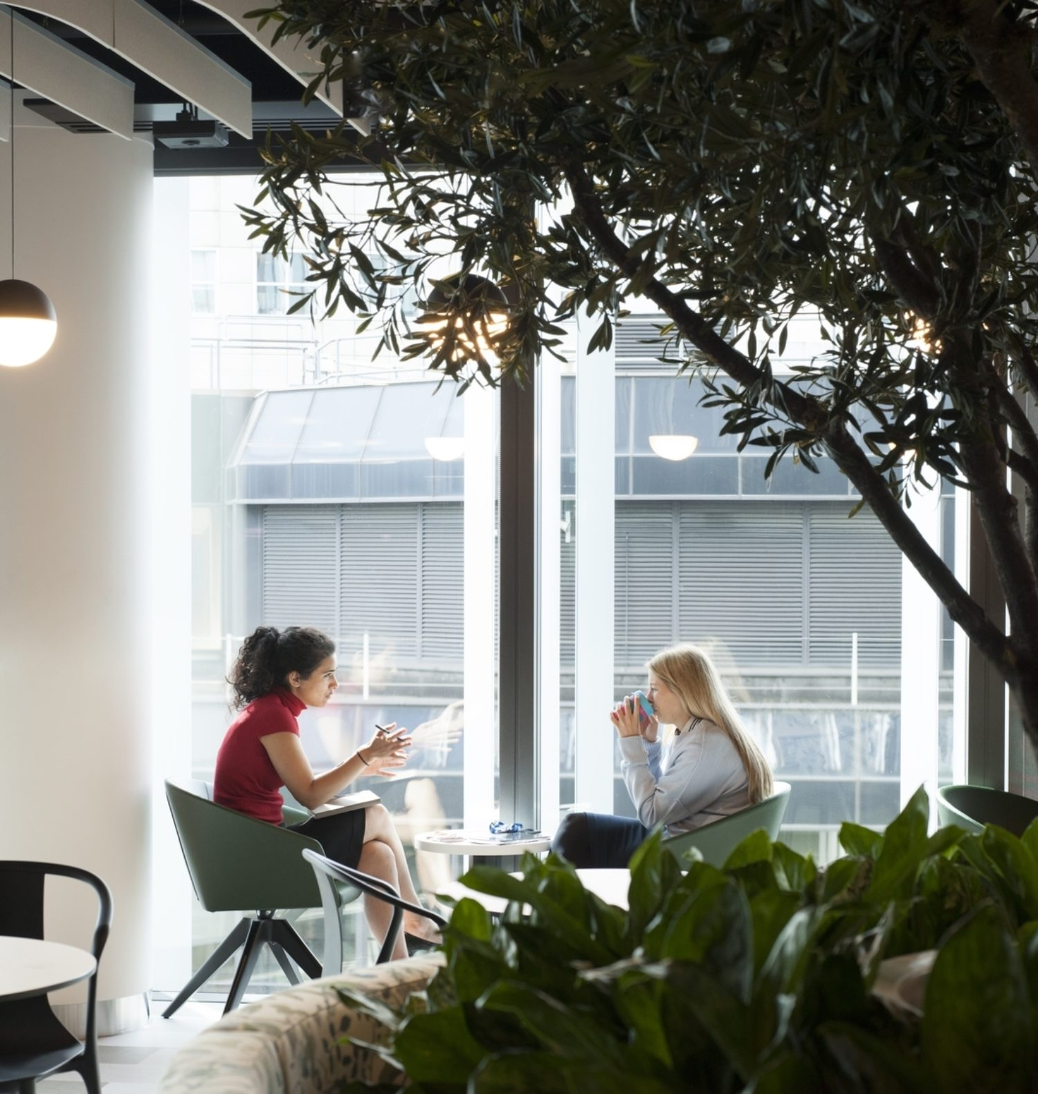 Biophilia in the workplace